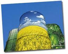 Tekuća i plinovita biogoriva, biomasa