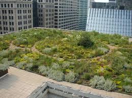 Vrste zelenih krovova